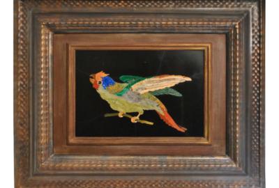 pappagallo-800---2-cut-tiny