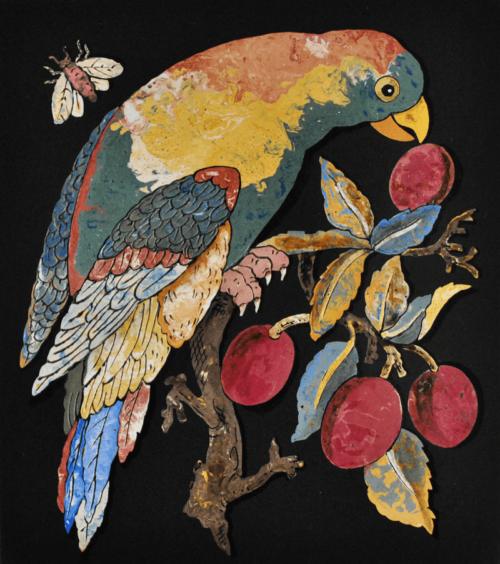 pappagallo e susine 2
